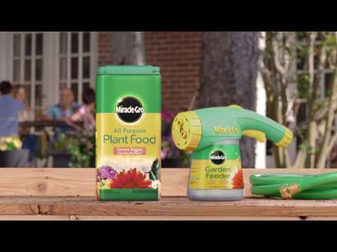 How to Use Miracle-Gro® All Purpose Water Soluble Plant Food